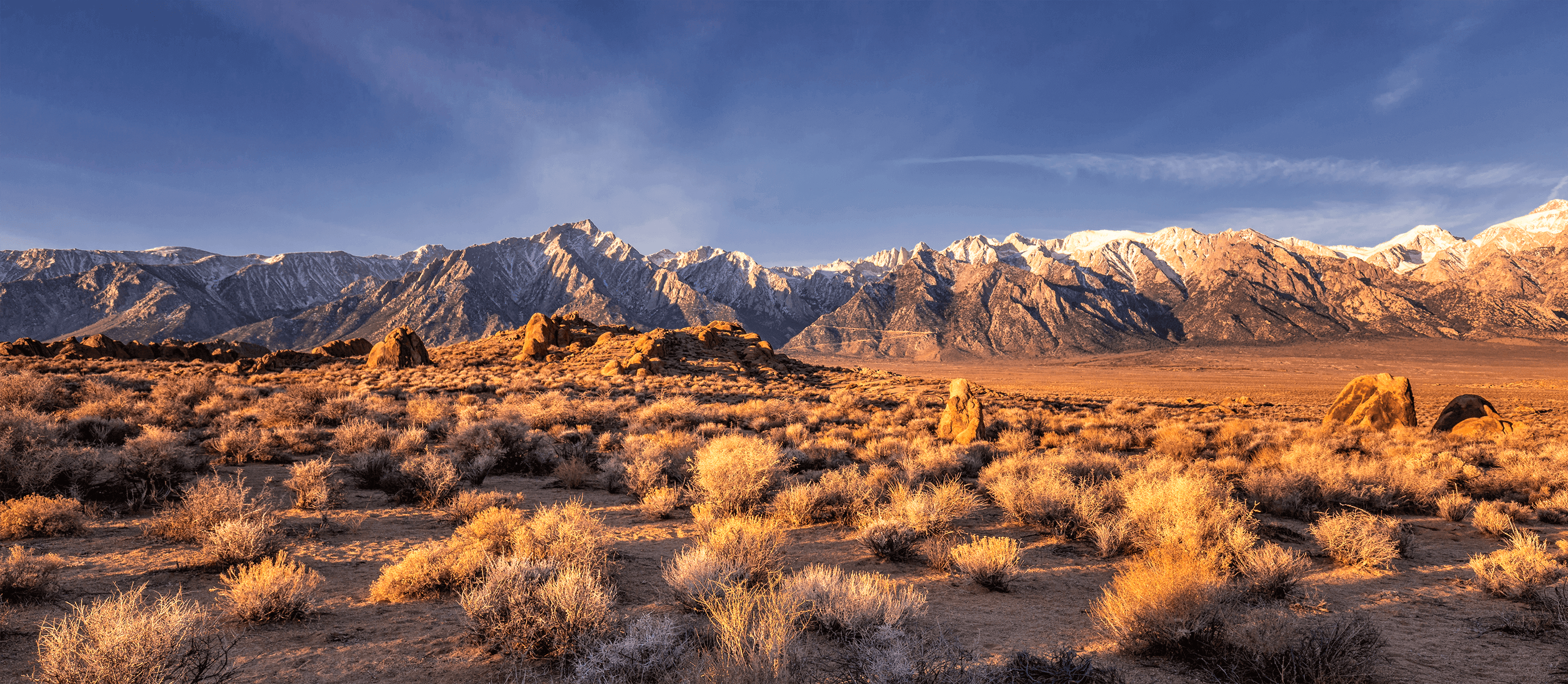 Image of desert with brush in foreground and snow capped mountains on horizon