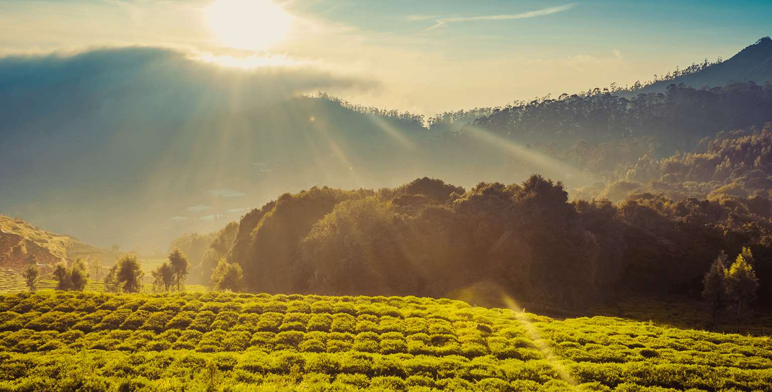Image of green field surrounded by mountains at sunset